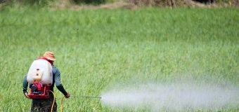 """Agrotóxicos: Recife lidera ranking nacional de intoxicação [""""De olho nos ruralistas""""]"""