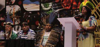 A Criação do Conselho Nacional de Política Indigenista e os desafios a serem enfrentados