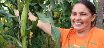 Casa da Mulher do Nordeste recebe certificado internacional por combate à desertificação