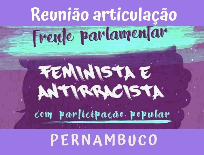 Reunião de articulação da Frente Parlamentar Antirracista com Participação Popular em Pernambuco