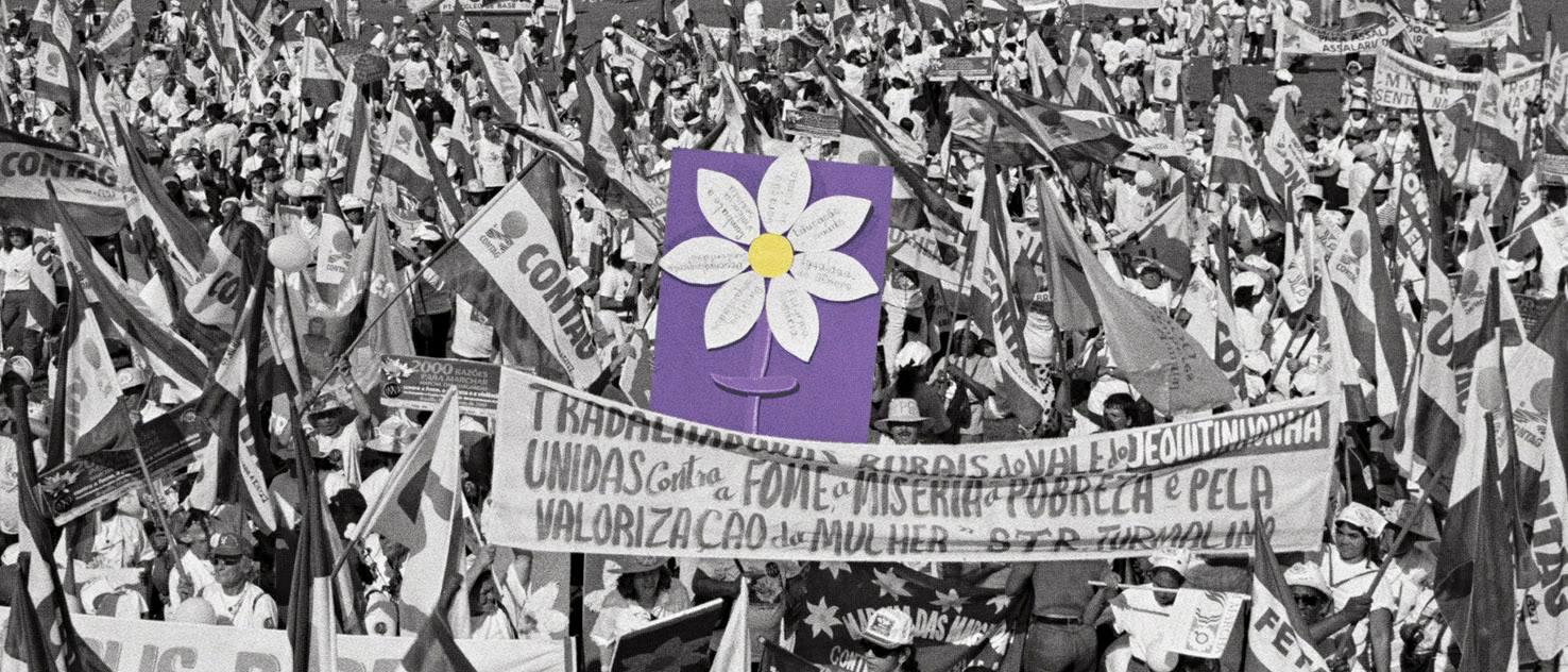 livroMargaridas_ClaudiaFerreira