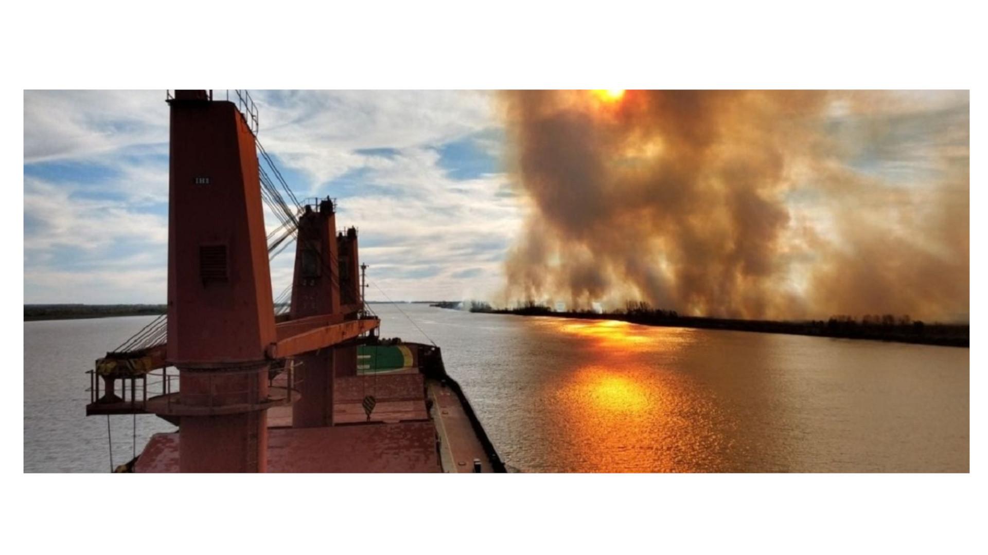 Tajos de la economía extractiva: los humedales del Paraná bajo fuego
